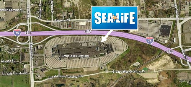 Auburn Hills To Host World-Class Attraction - SEA LIFE ...