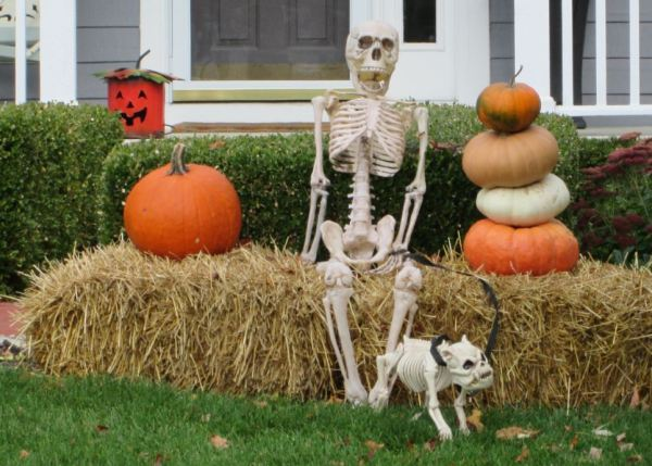 skeleton with dog